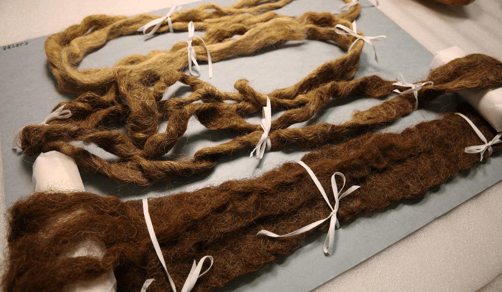 barba più lunga del mondo